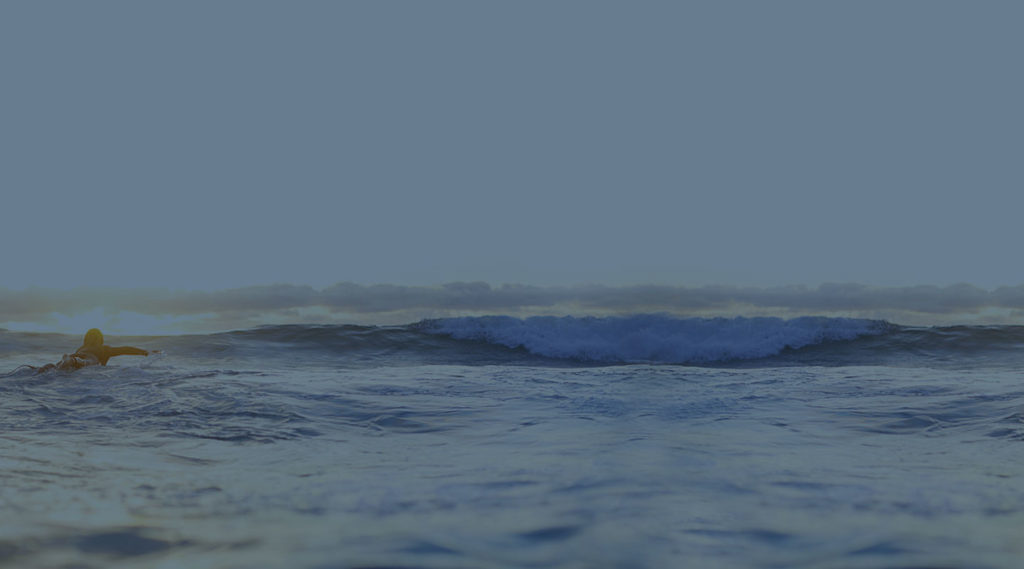 Why New Ocean?